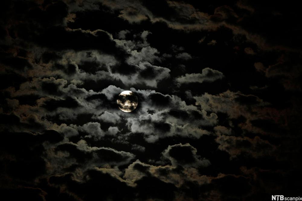 Nattehimmel med skyer og månelys. Foto.