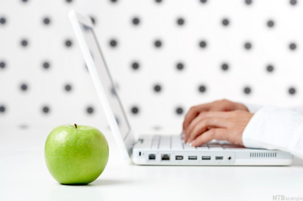 Person som skriver på laptop. Foto.