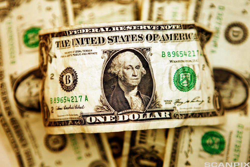 One dollar bill. Photo.