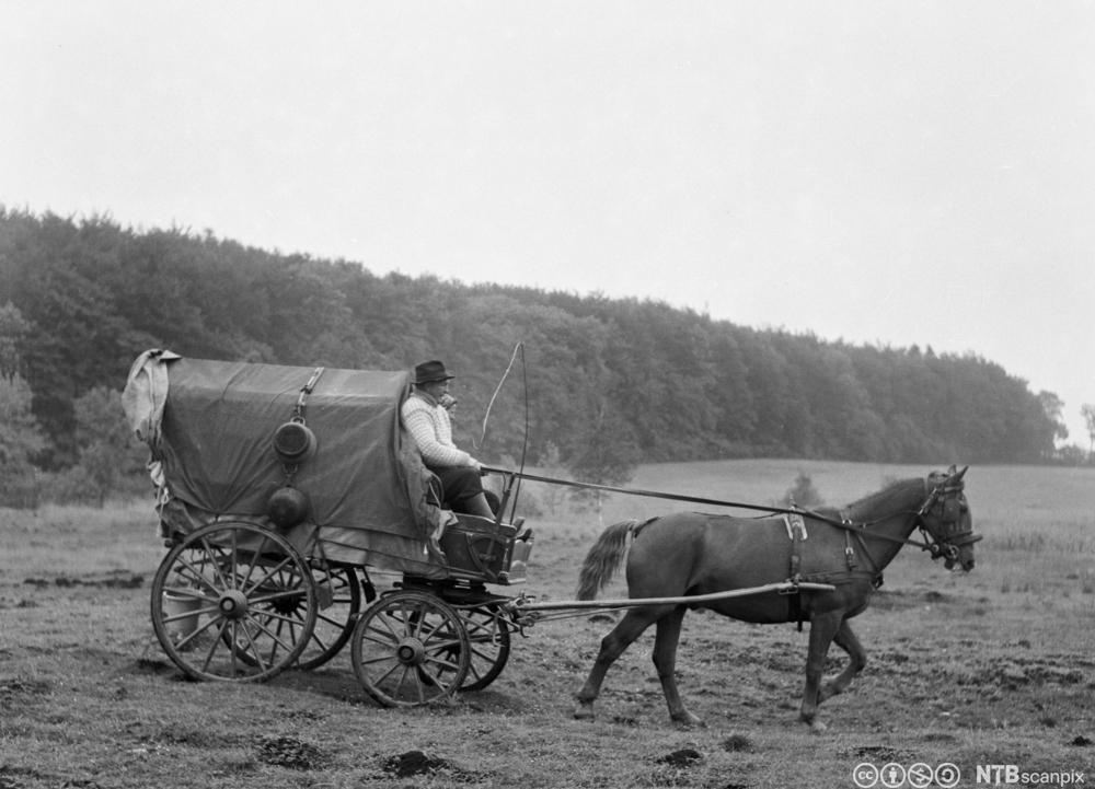 Sigøynere i prærievogn med hest i Jyderup i Danmark på 1950-tallet. Foto.
