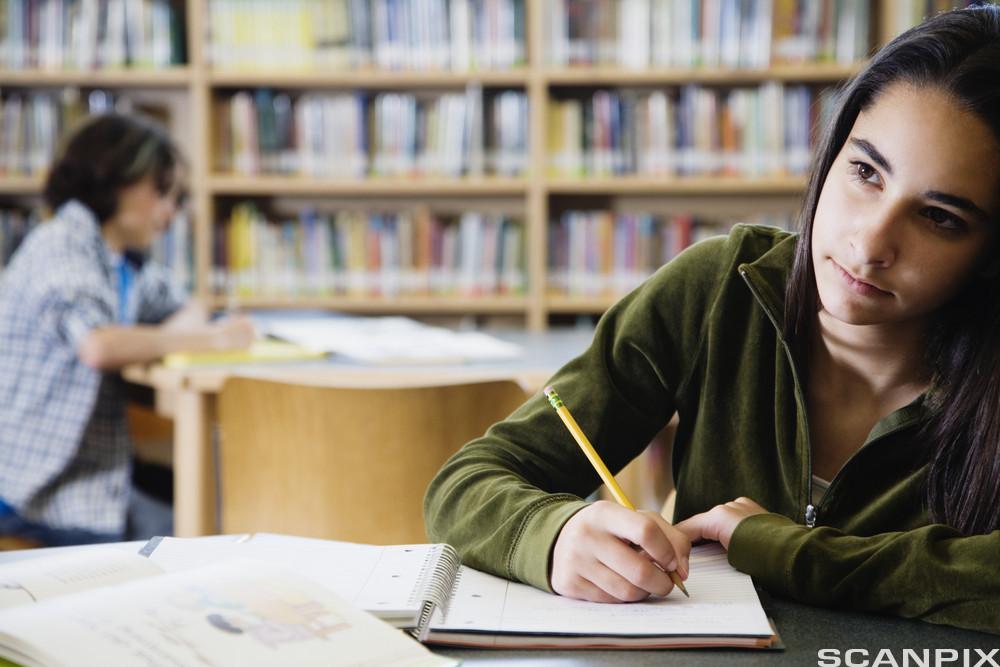 Studere i biblioteket