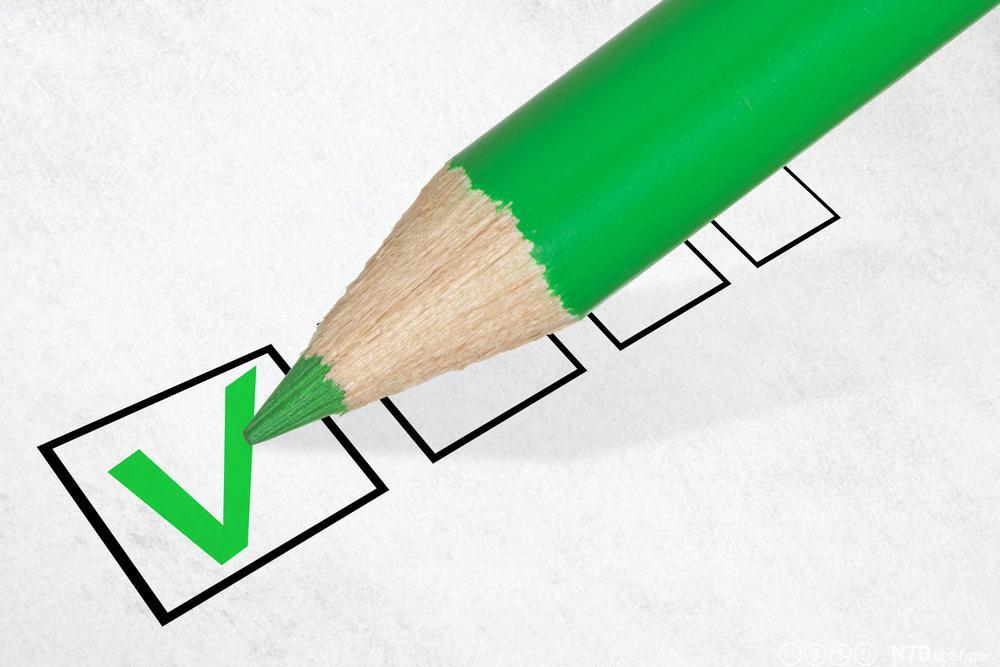 Ein grøn blyant hakar av i eit ruteskjema. Illustrasjon.