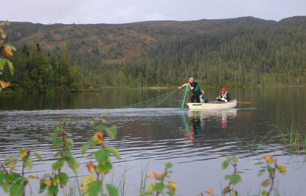 Garn settes fra båt i en innsjø. Foto.