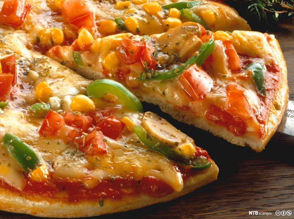 Pizza med ost og paprika. Foto.