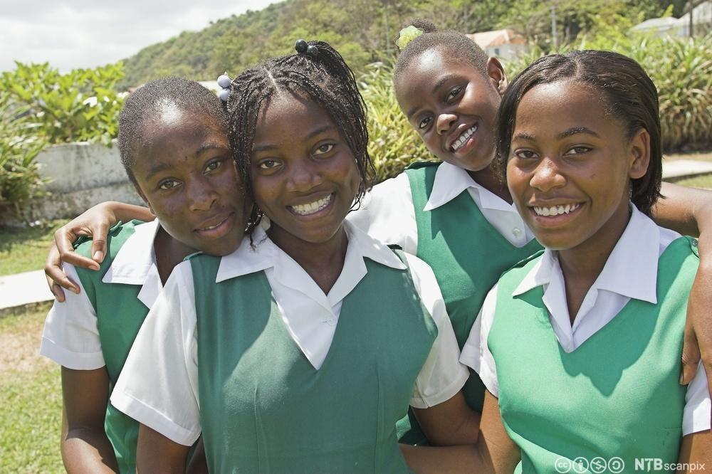 Schoolgirls in uniforms. Photo.