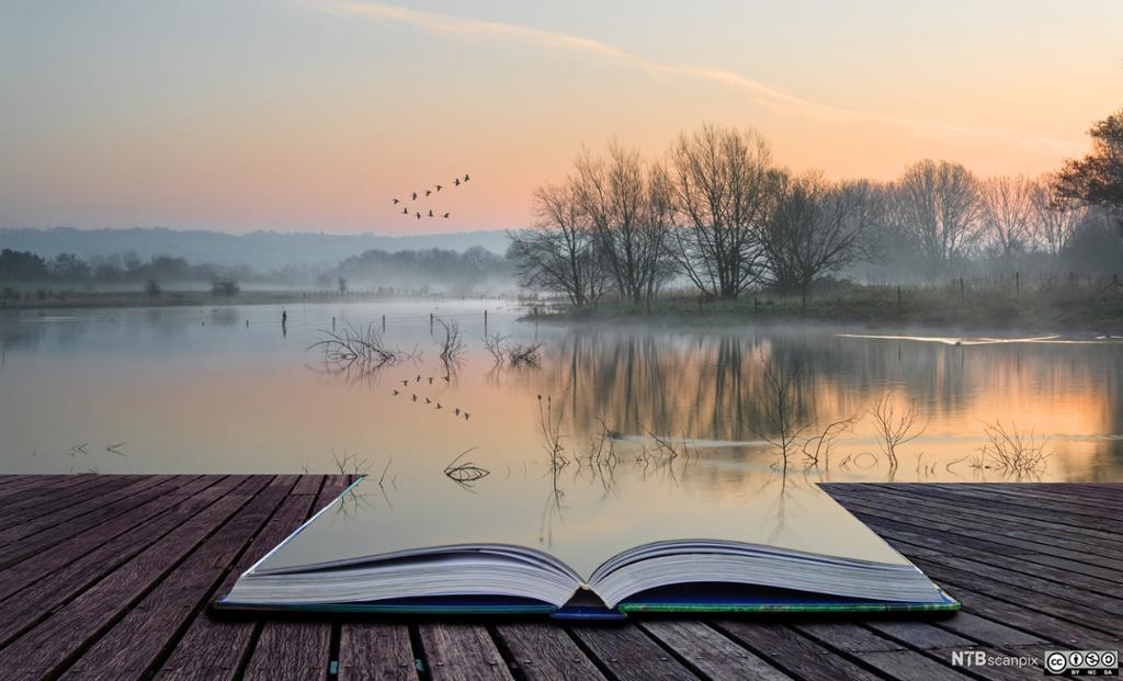 Oppslått bok som åpner et landskap. Manipulert foto.