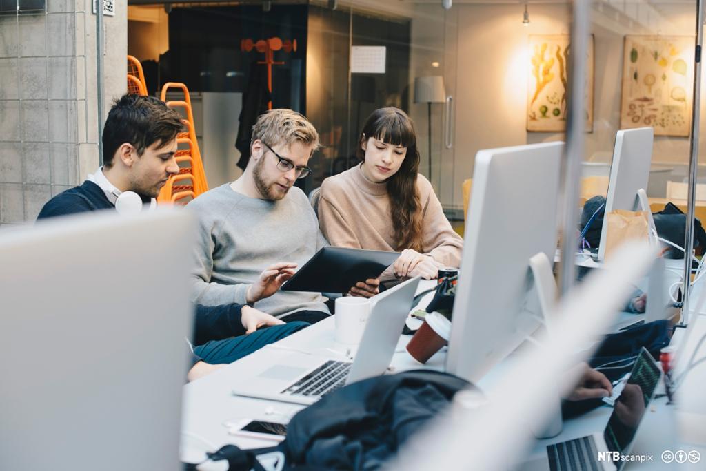 Mannlige og kvinnelige dataprogrammerere bruker ipad på kontoret. Foto.