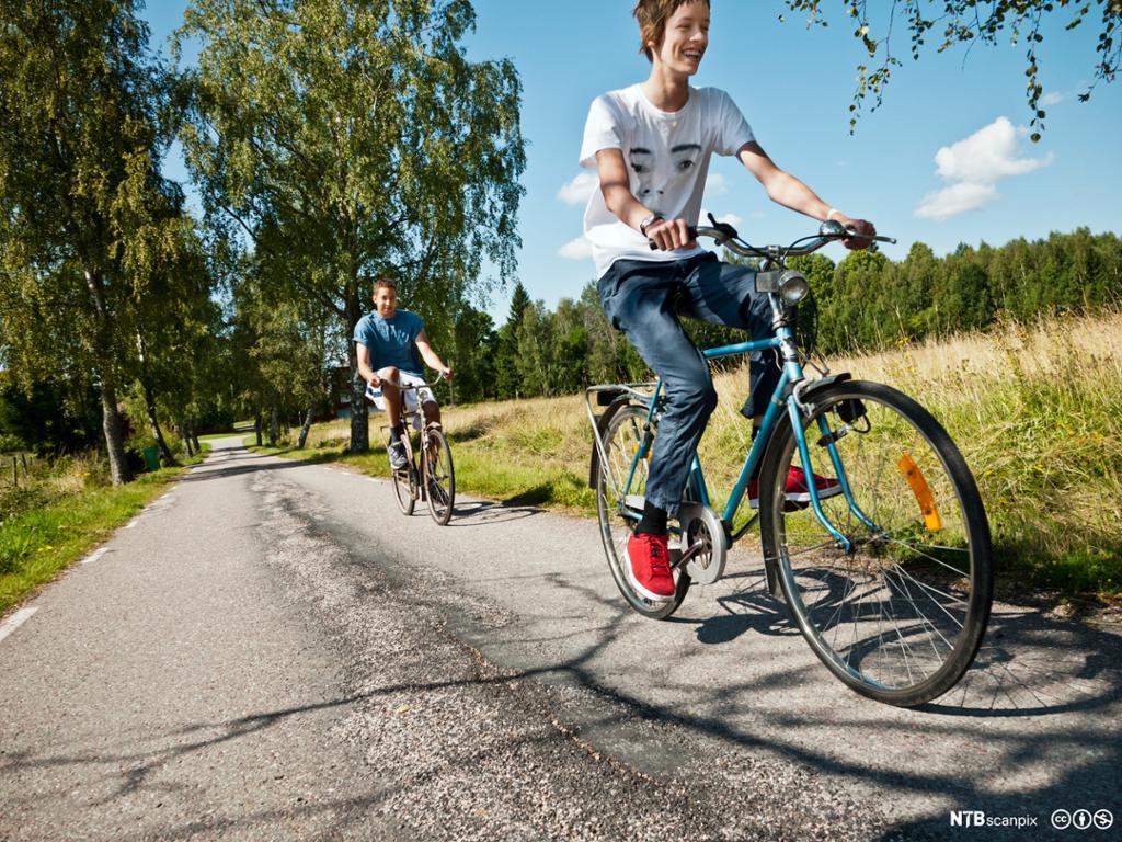 To unge gutter sykler langs enga inne i en skog. Bilde.