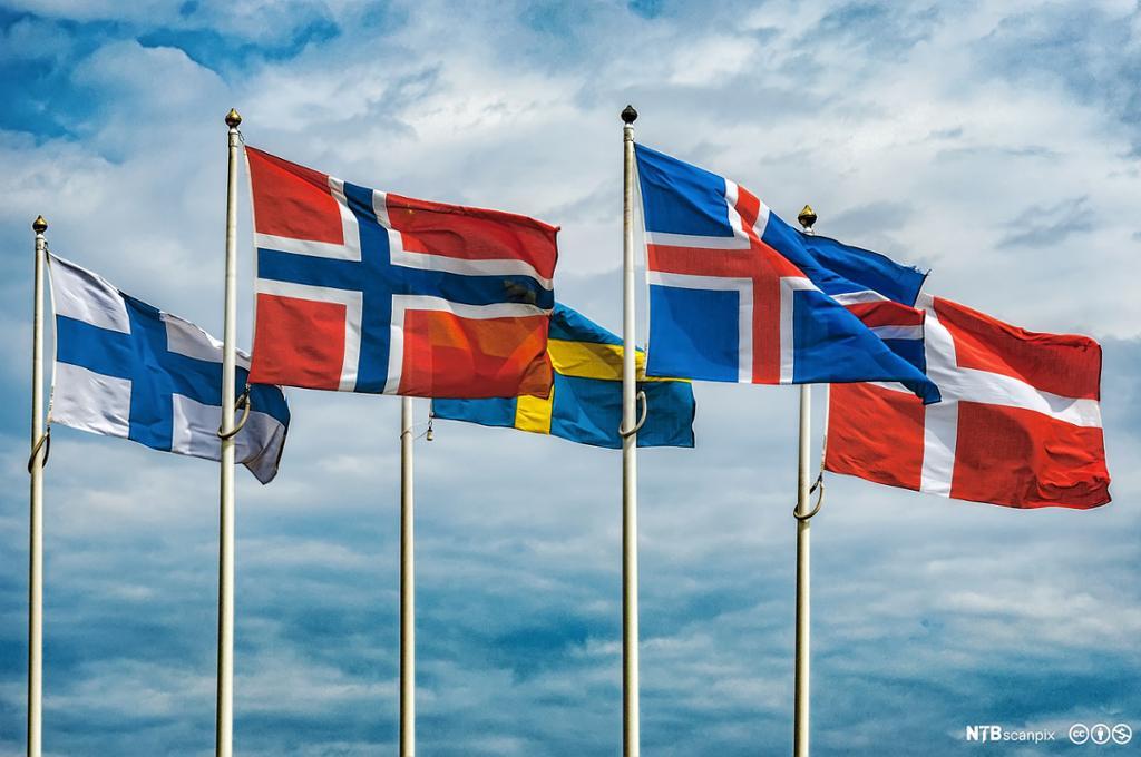 Finsk, norsk, svensk, islandsk og dansk flagg blafrer i vinden. Foto.