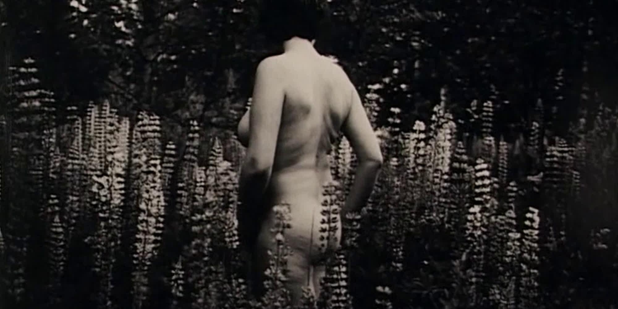 Utsnitt fra filmen Kroppen min.