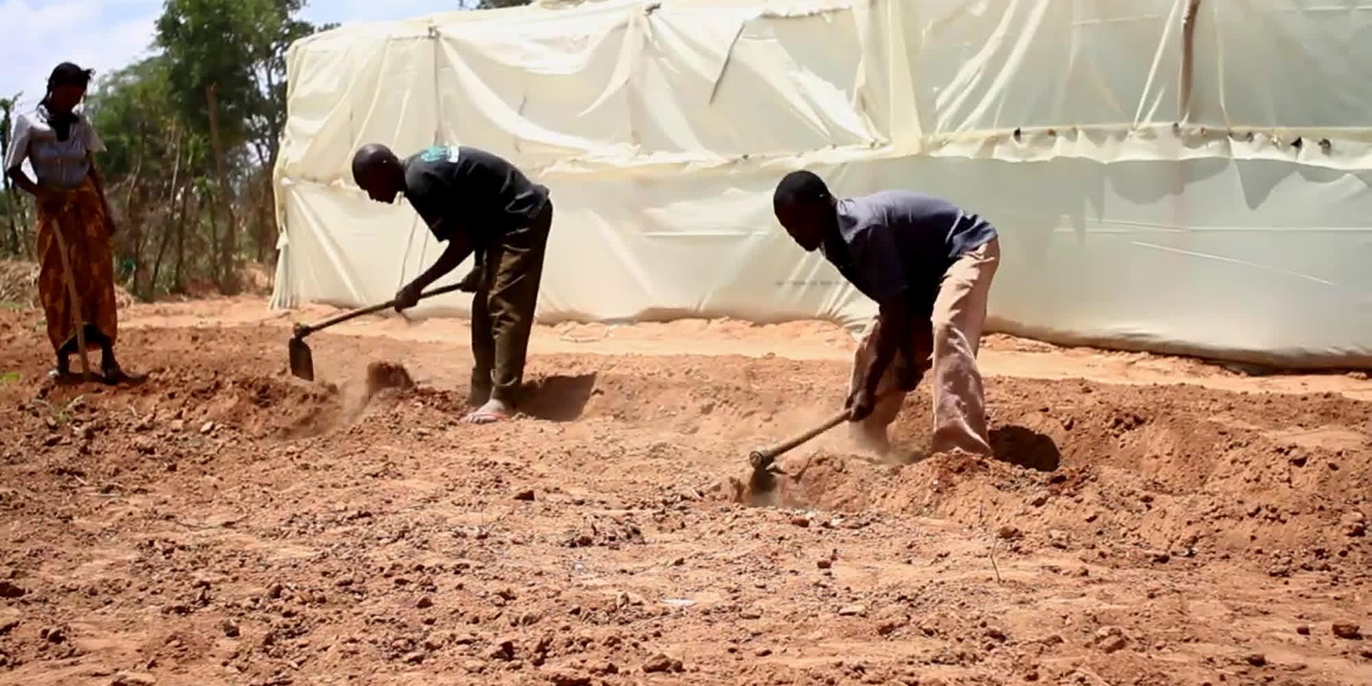 To menn jobber med å hakke i tørr og støvete jord. Foto.