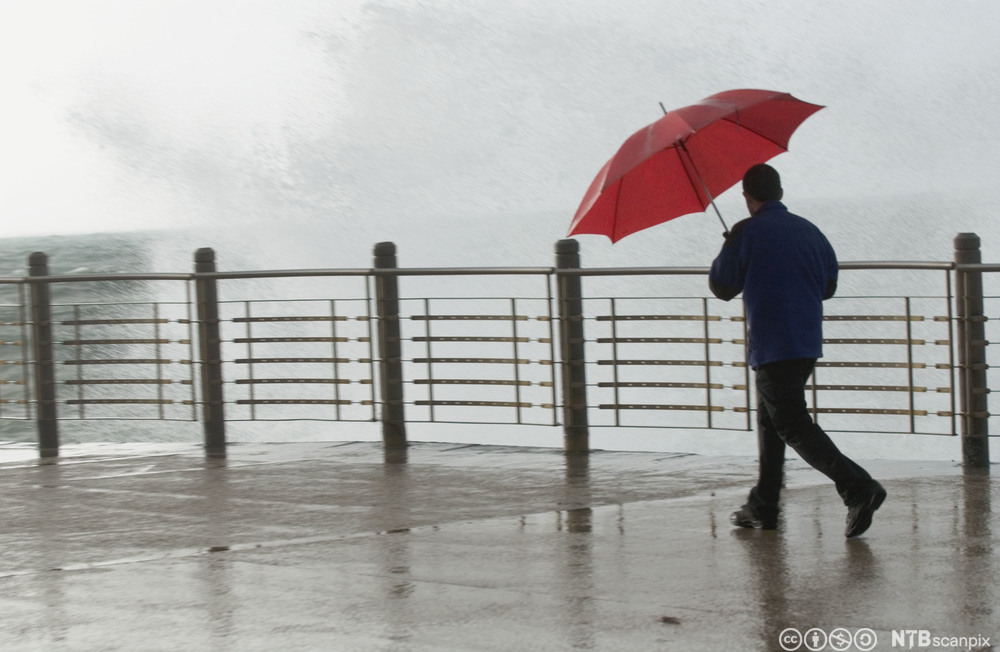 Mann med paraply i sterk vind.  Foto.