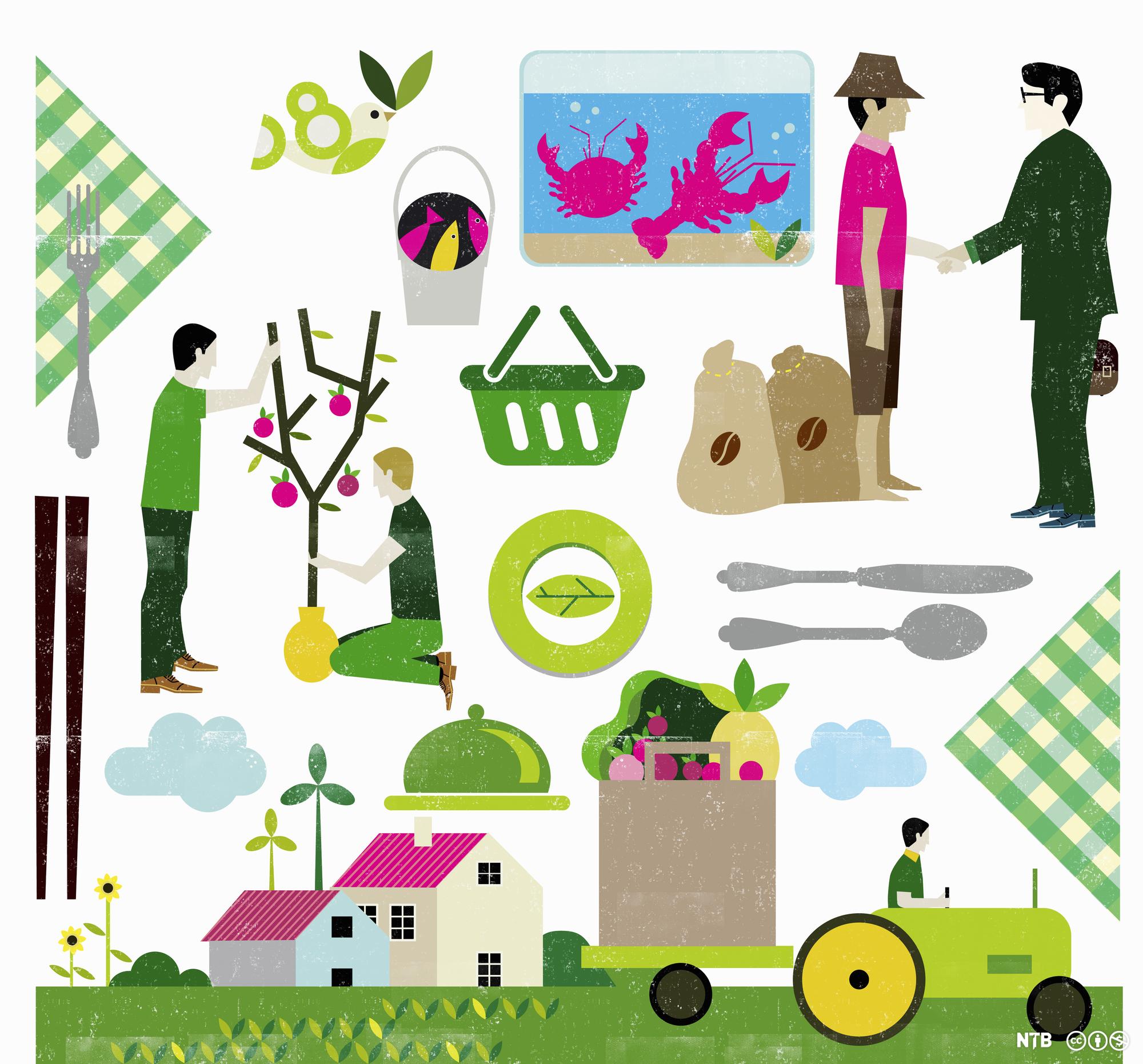 Ulike situasjoner knyttet til mat og matproduksjon. Illustrasjon.