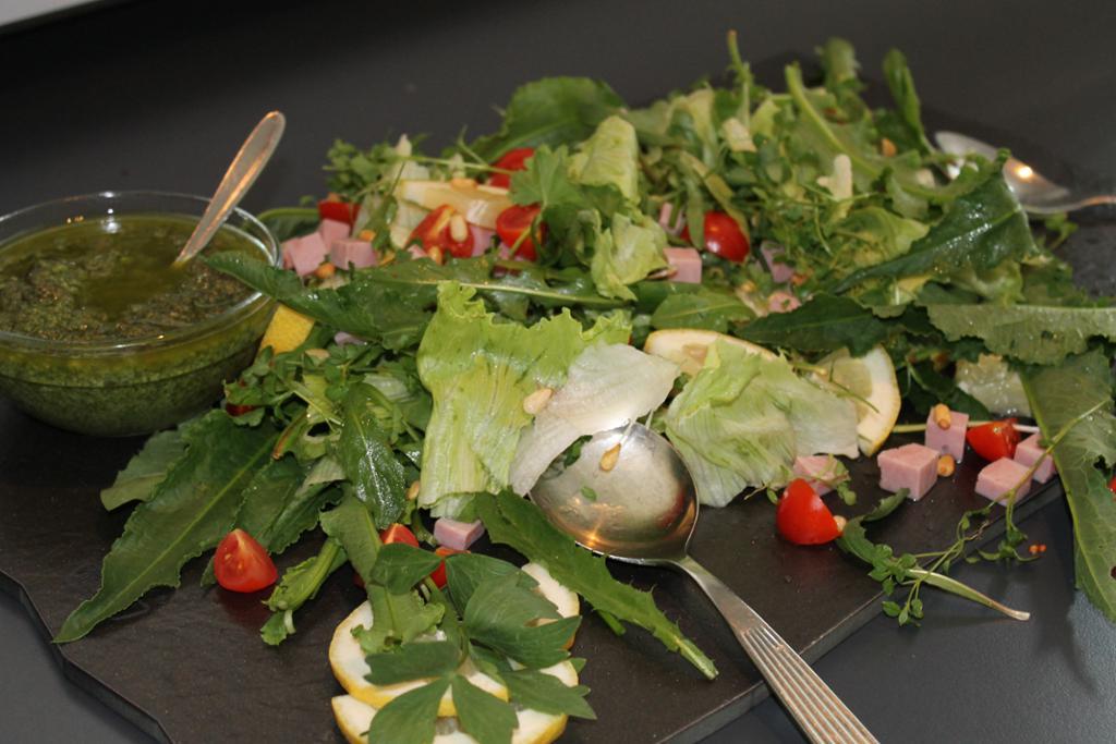 Salat med vassarve, løvetann, løpstikke, gauksyre og marikåpe servert med skvallerkålpesto.Foto