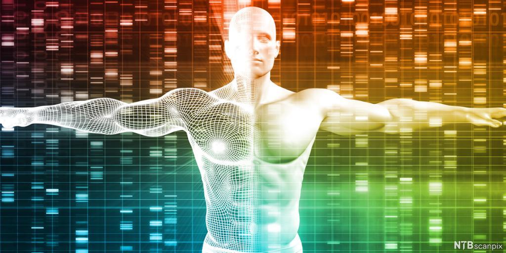 Mannsfigur foran et kart med DNA-analyser. Illustrasjon.