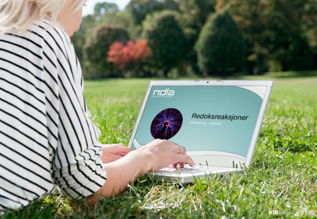 Jente ligger på magen på gresset med PC. Foto