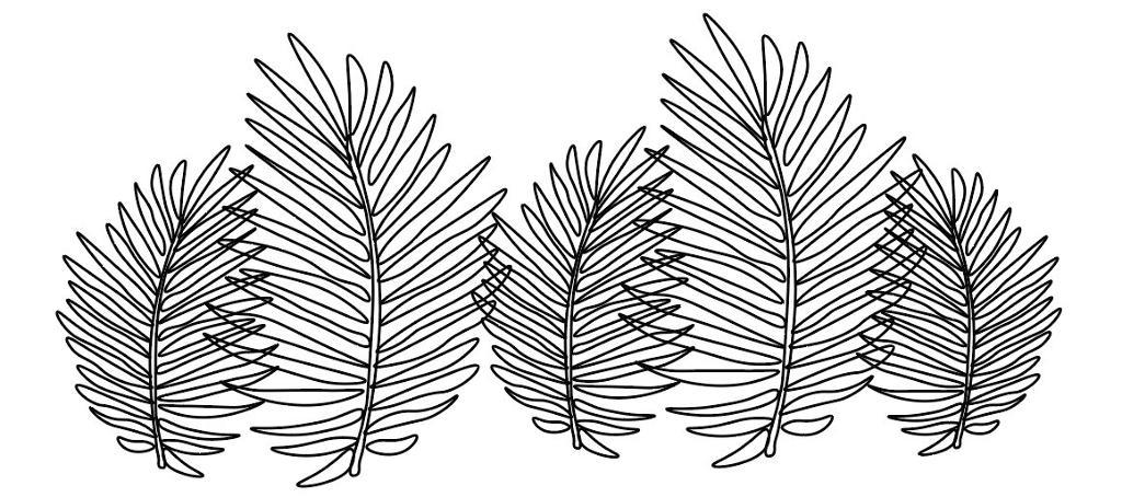 Strektegning av blader. Illustrasjon.