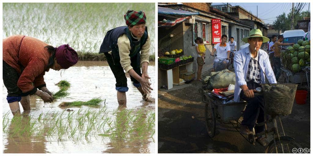 To kvinner setter risplanter og en mann sitter på sykkelen sin i en fattig bydel i Kina. Kollasj.