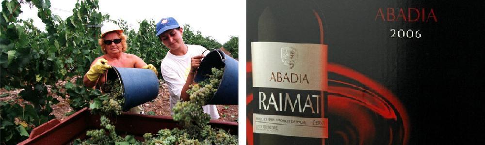 Bilder av vindunk fra Raimat og to damer som høster druer.