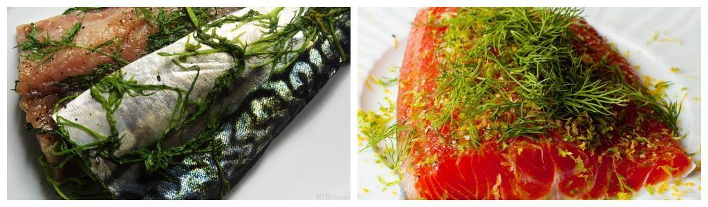 kollasj med gravet fisk, gravet makrell og gravet laks