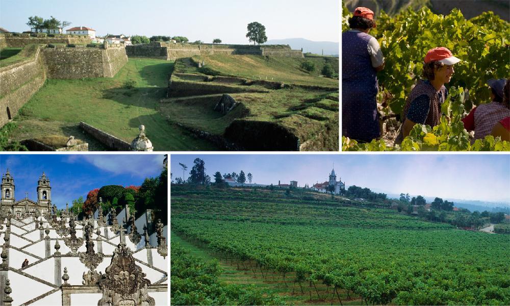 Diverse landskapsbilder fra vinområdet Minho.