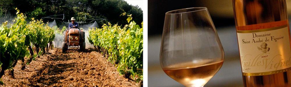 Traktor som arbeider på vingården og et glass vin.