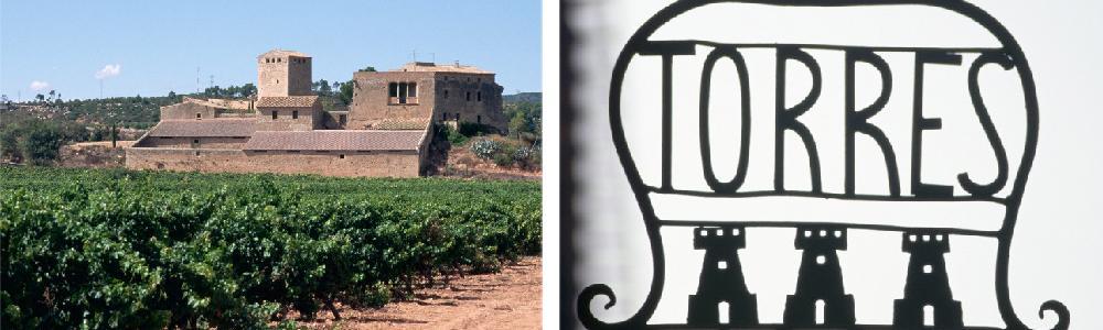 Vingård fra det spanske området Torres og et smidd jernskilt for Torres vingård