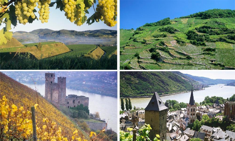 Kollasj: Vinområder i Tyskland