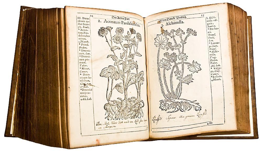To sider fra originalutgave av Flora Danica. Faksimile.