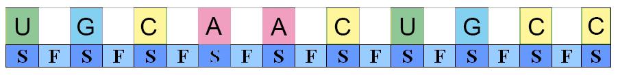 RNA-struktur. Modell.