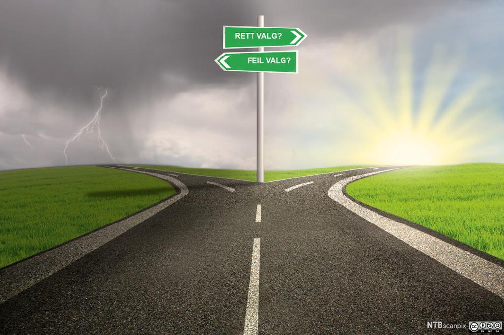 Vei som skiller seg i en rett og en gal retning. Foto.