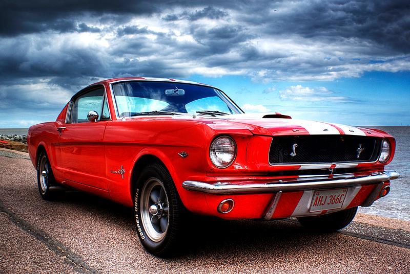 Mustang.photo.