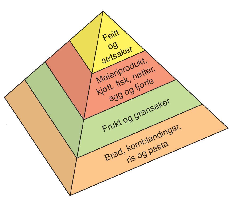 Næringspyramiden. Illustrasjon.