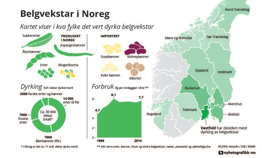 Belgvekster i Norge. Grafikk.