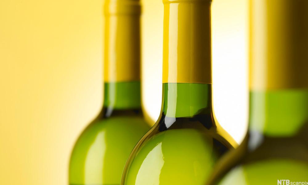 Flasker med hvitvin