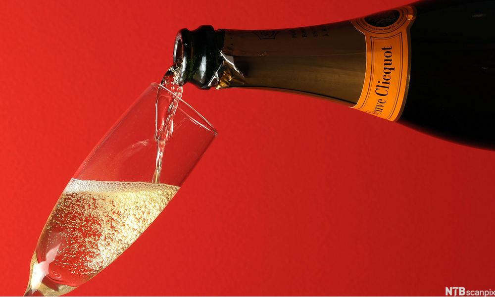 Glass med champagne