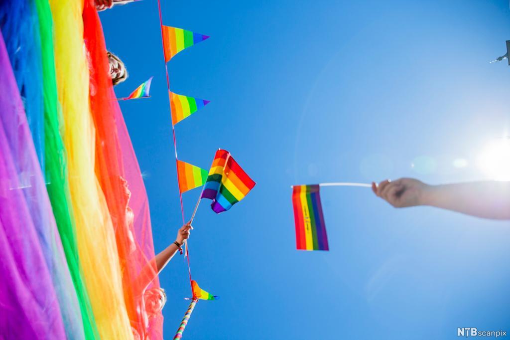 En rekke regnbueflagg under Oslo Pride Parade i 2018. Foto.
