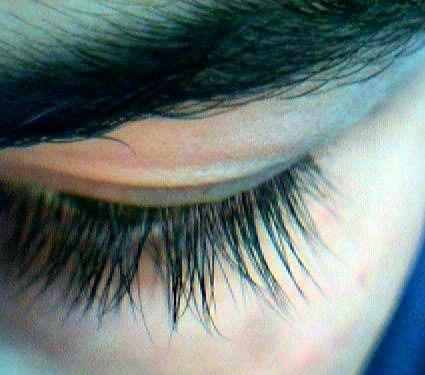 Et lukket øye med kraftige øyenbryn og øyenvipper.