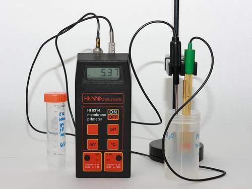 Digitalt pH-meter i bruk. Foto.