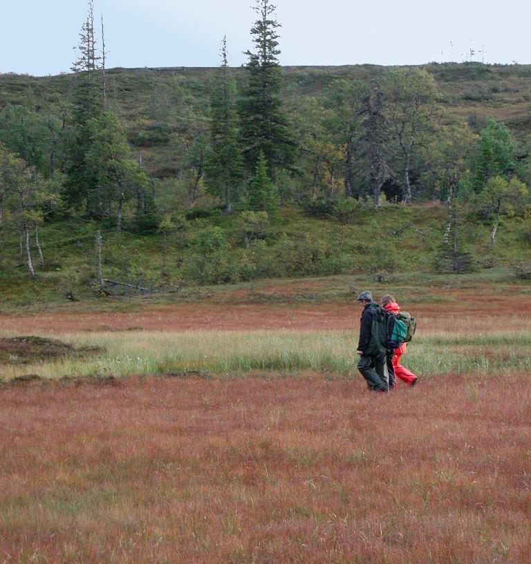 To personer går over ei rød myr. Foto.