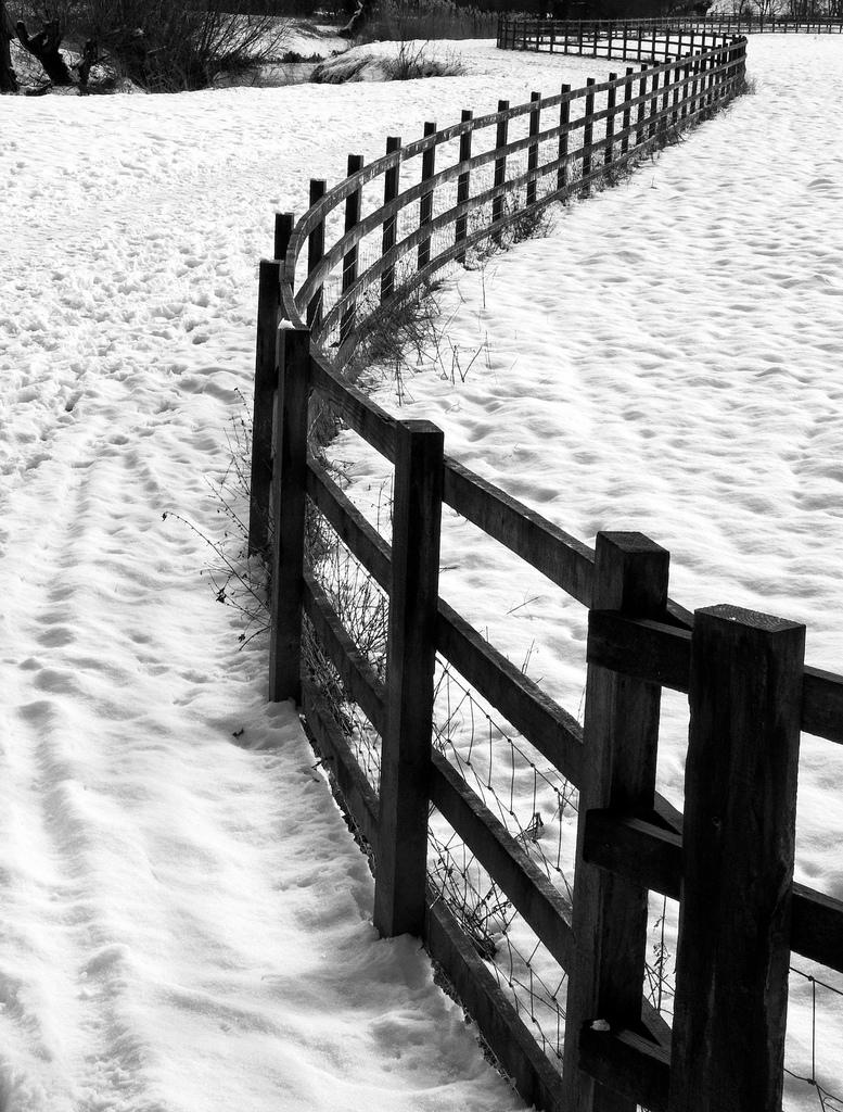 Fence. Photo.