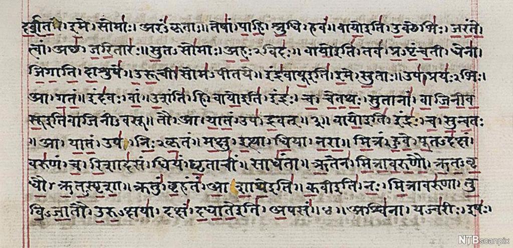 Håndsakrevet manuskript skrevet på sanskrit (et gammelt indisk språk). Foto.
