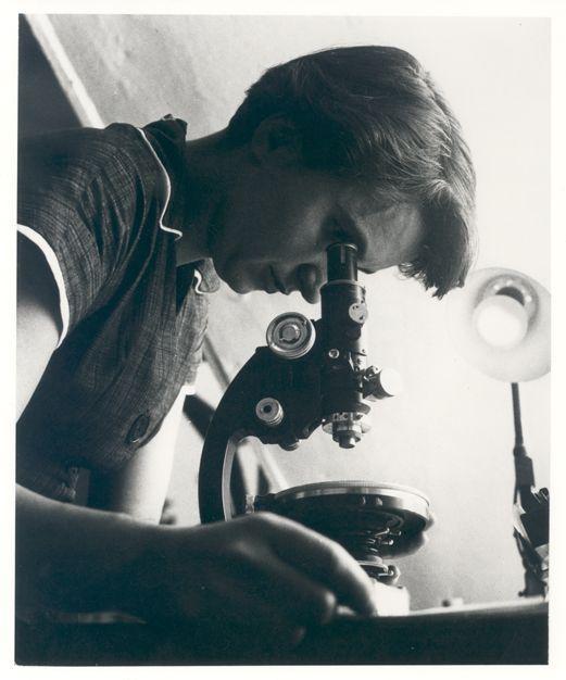 Rosalind Franklin studerer i mikroskop. Foto.