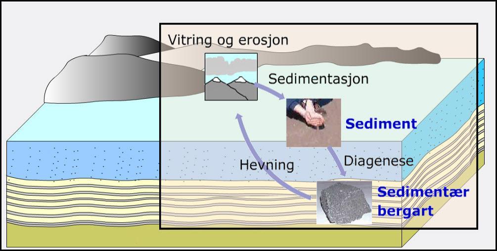 Sedimentær bergart. Illustrasjon.