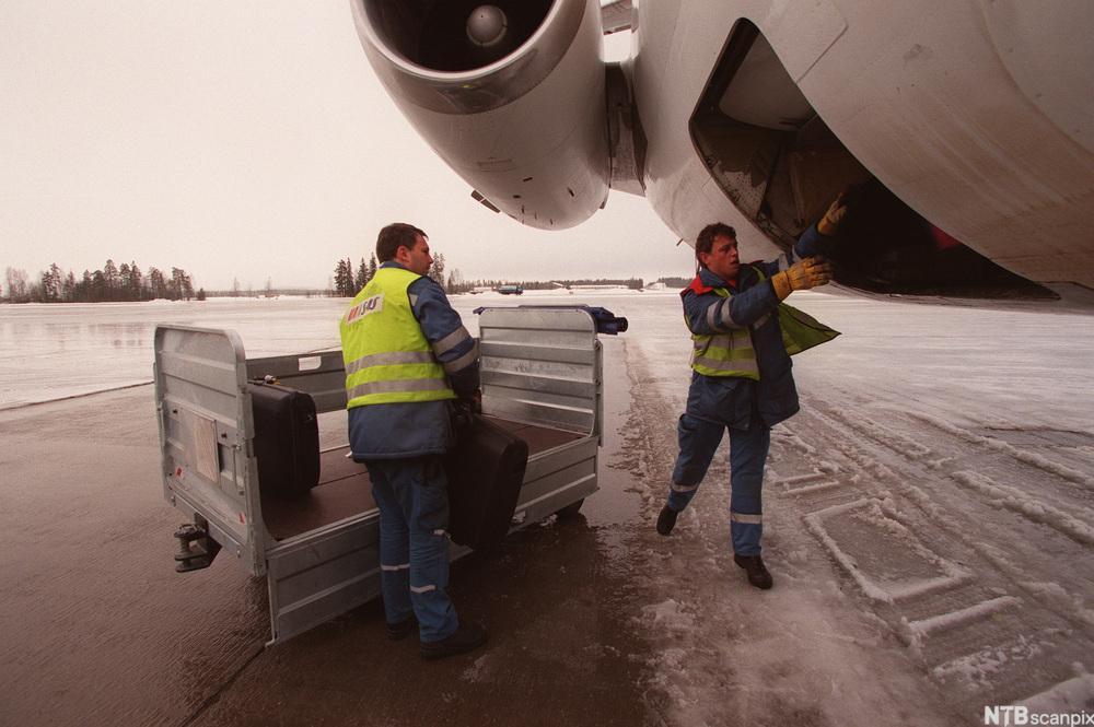 Lasting av bagasje i fly. foto.