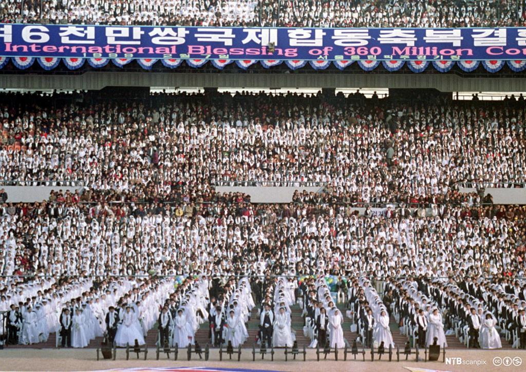 Stadion fylt med brudepar. Bannere med koreansk skrift. Foto.