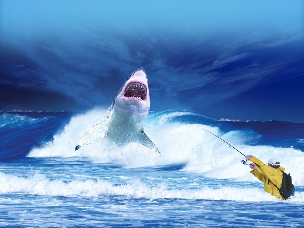 Fisker har fått hai på kroken. Illustrasjonsfoto.