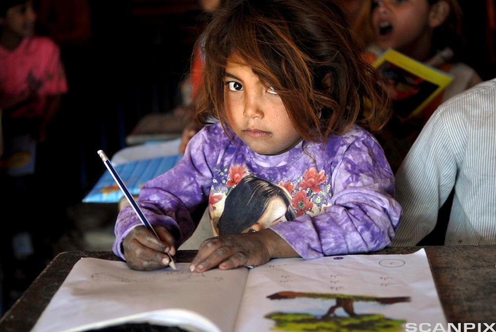 jente på skole i Irak. Foto.