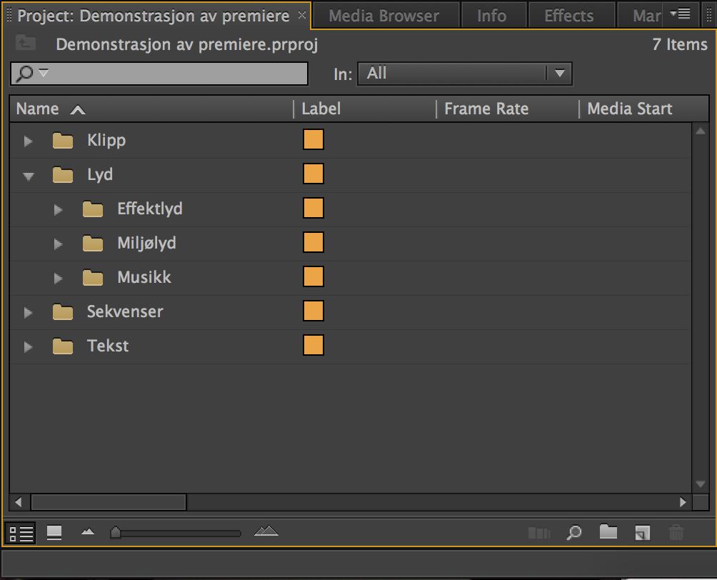 Mappestruktur i videoredigeringsprogram. Skjermdumper.