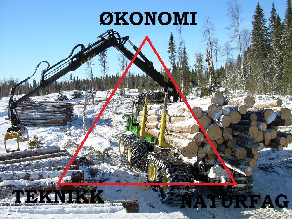 Skogbruk  med trekant. Foto/tegning